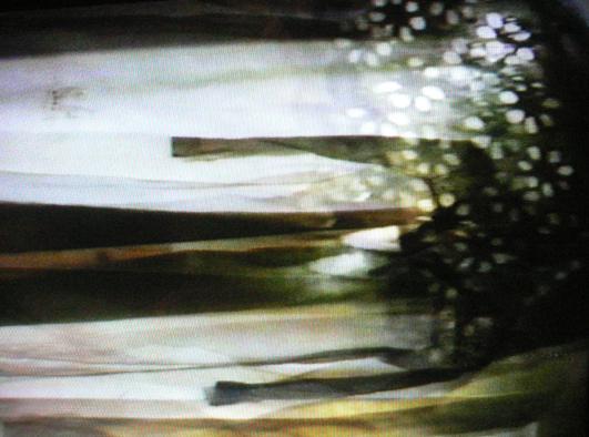 kneipp video 7
